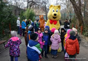 Bear Festival in Budapest Zoo by B. Zoltan